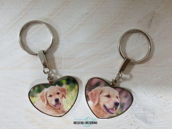 Voor je huisdier