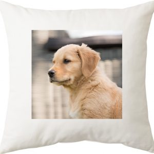 Kussen met foto van jouw hond