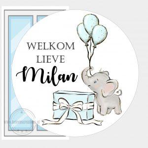 Raamsticker geboorte olifantje ballon jongen